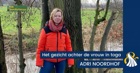 HET GEZICHT ACHTER DE VROUW IN TOGA | Adri Noordhof